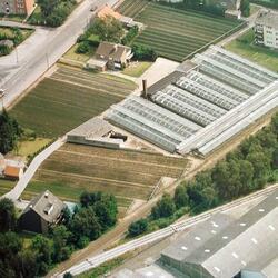 Gärtnerei Brokemper - Luftaufnahme